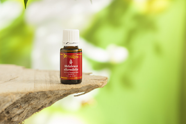 Young Living Melaleuca (alternifolia) Essential Oil